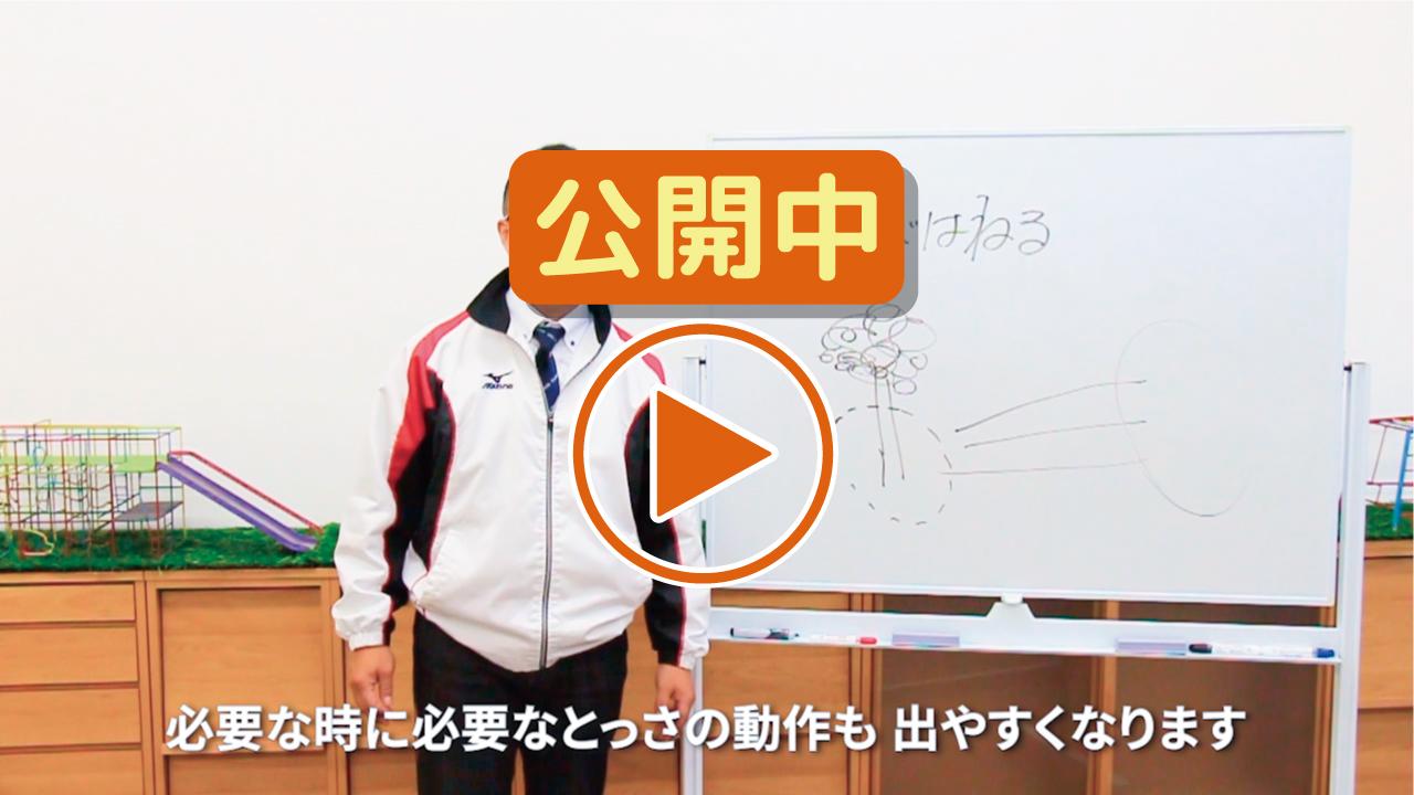 【安田式体育遊びの基本】安全能力を高める遊び(跳びはねる)